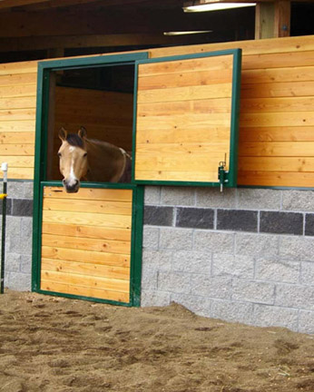 A5 Dutch Doors for Horse Stalls